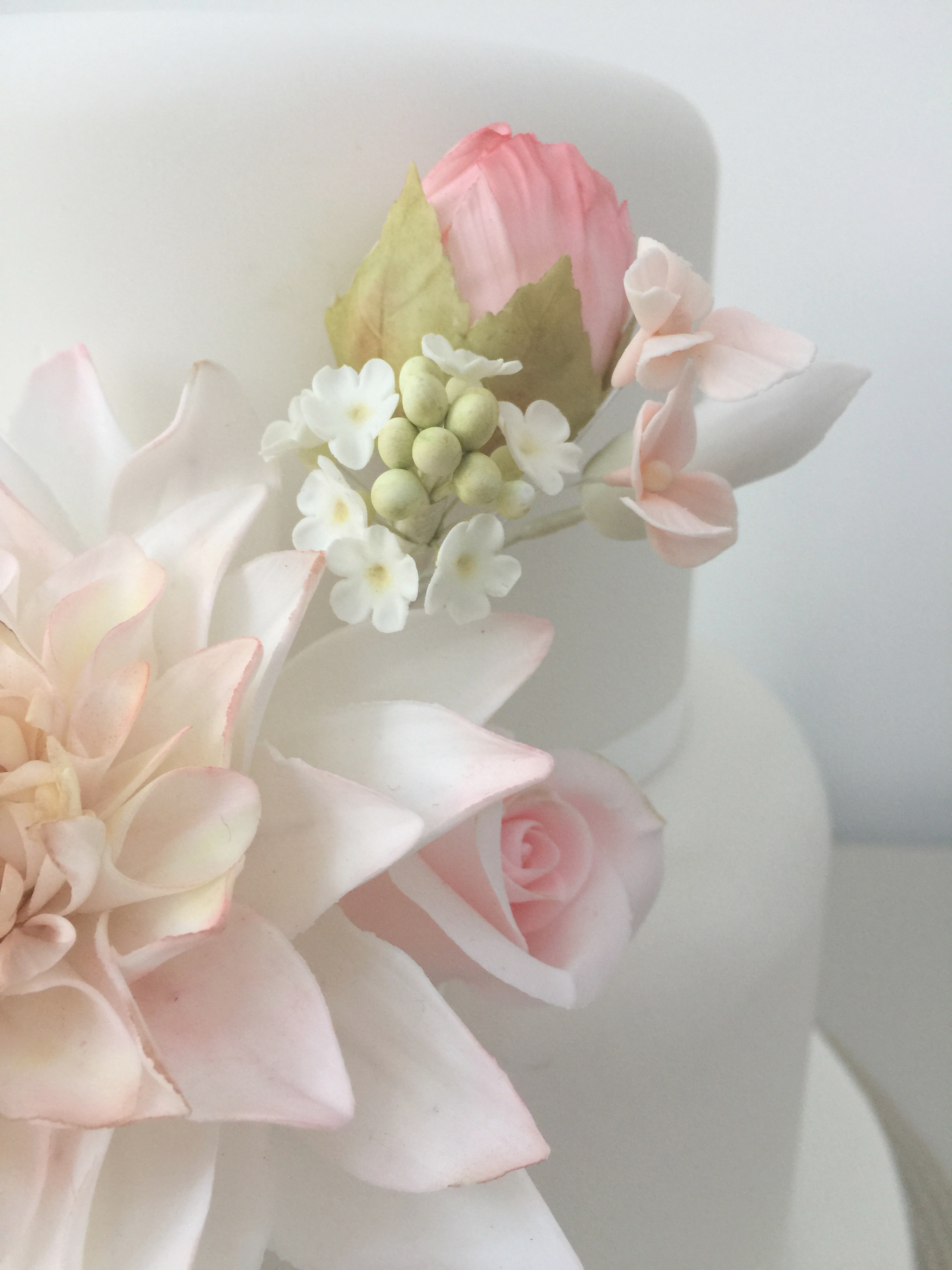 Cake Decorating Classes - The Little Sugar Box