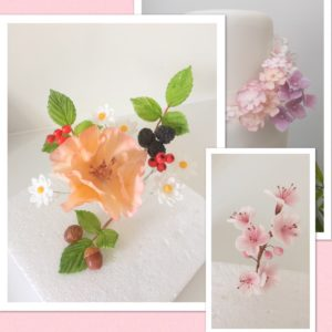 The Little Sugar Box presents Sugar Flowers for Beginners