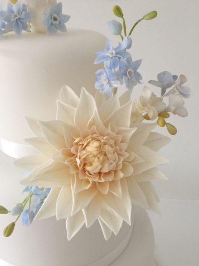 Sugar Flower Dahlia by Alison Newman